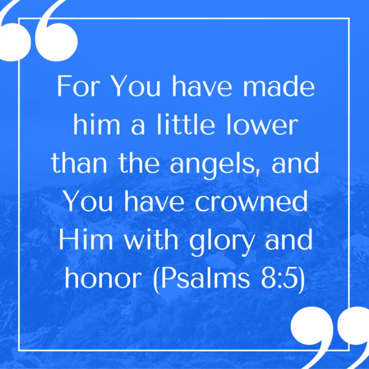 Psalms 8-5